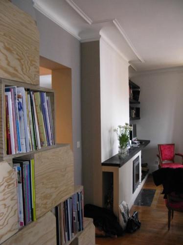 Rénovation et réorganisation d'un appartement classique : Living : inser cheminée et bibliothèque