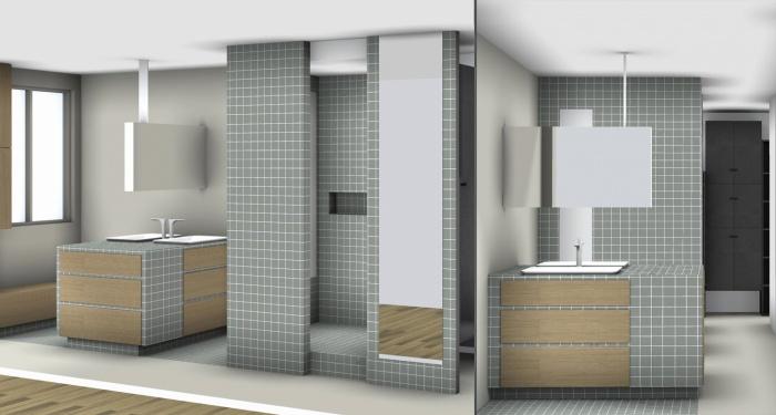 Renovation d'un loft sous les toits : Salle de bain 3D